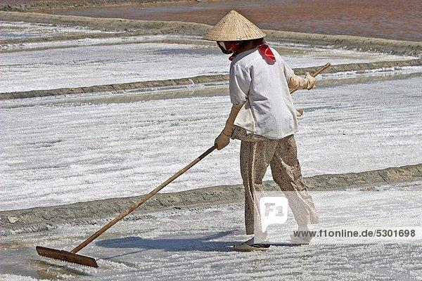 kegelförmig  Kegel  Bodenhöhe  Frau  Hut  Rechen  Verlust  Teich  Speisesalz  Salz  Vietnam
