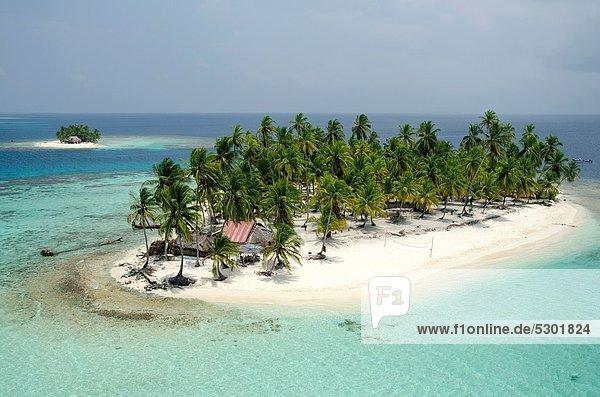 Baum Gebäude Insel Karibik Mittelamerika Palme Reetdach Inselgruppe Panama