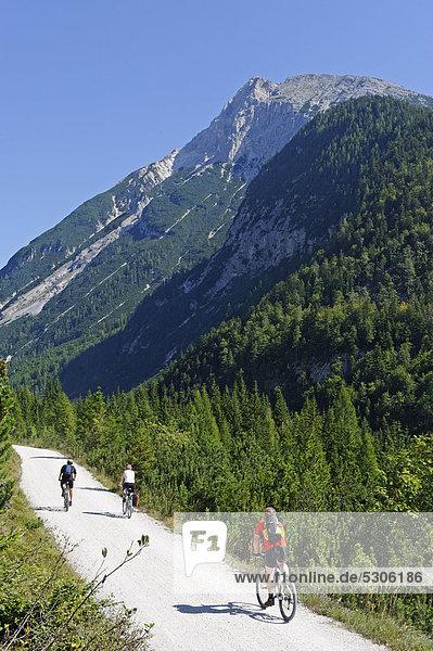 Road leading to the Karwendeltal valley with Mt Pleisenspitz at back  Tyrol  Austria  Europe