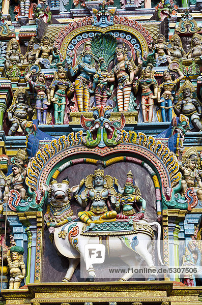 One of the Gopurams of the Menakshi-Sundareshwara Temple  up to 50 m high and artfully decorated with thousands of colourful statues of gods and deities  Madurai  Tamil Nadu  India  Asia