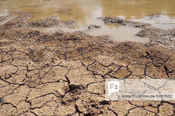 Ausgetrockneter Boden am Rand eines fast verschwundenen Wasserlochs  Auswirkungen des Klimawandels  Gran Chaco  Provinz Salta  Argentinien  Südamerika