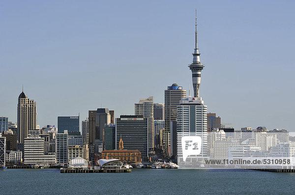 Skyline Skylines Ansicht Basset Auckland Aussichtspunkt Neuseeland
