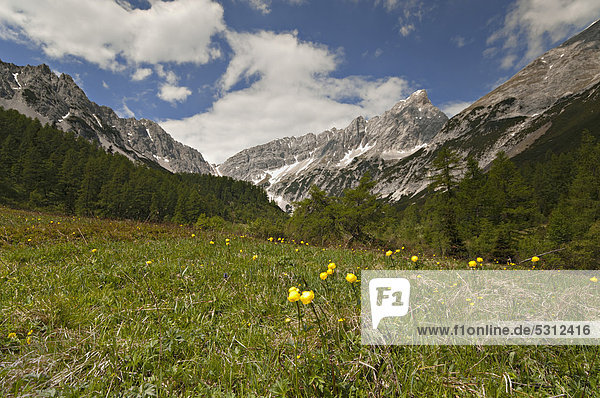 Issanger  Stempeljoch ridge at the back  Isstal valley  Karwendel Mountains  Tyrol  Austria  Europe