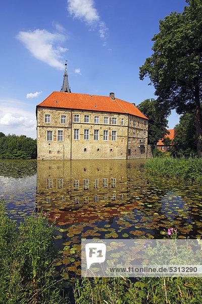 Burg Lüdinghausen  Wasserburg  Renaissanceburg  Lüdinghausen  Kreis Coesfeld  Münsterland  Nordrhein-Westfalen  Deutschland  Europa
