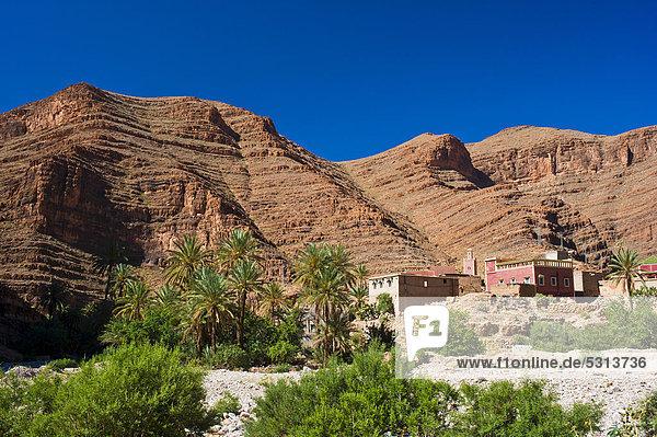 Berg Baum Landschaft Tal Afrika Marokko