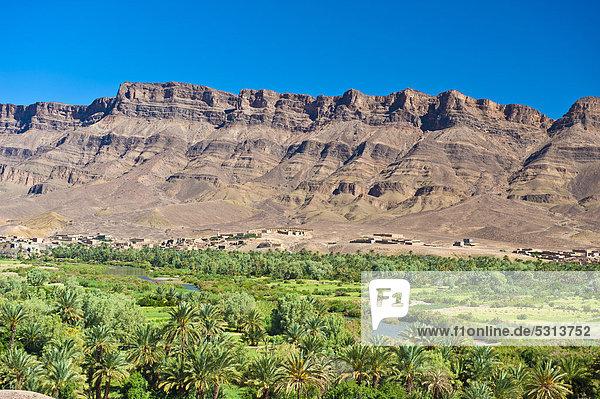 Flusstal des Draa mit Palmenhain und kleinen Ortschaften und dem Djebel Kissane  Agdz  Draa-Tal  Südmarokko  Marokko  Afrika