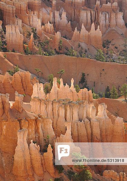 Felsformation Queen Victoria  Queens Garden Trail  Sunset Point  Nationalpark Bryce Canyon  Utah  Vereinigte Staaten von Amerika  USA