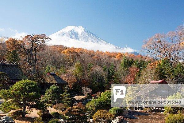 Japan  Mount Fuji  Oshino Village  Masuno-Ya Garden.