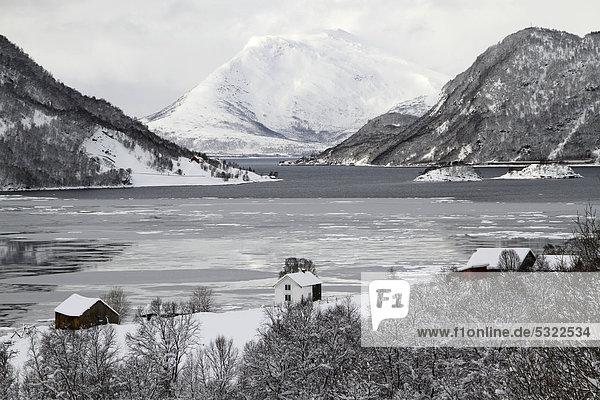 Winterlandschaft  Schnee  Berge  Fjord  Eis  Region Troms  Norwegen  Europa