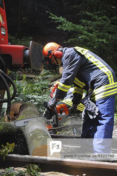 Removal of a fallen tree blocking the rail traffic between Dreizelgenberg Tunnel and Dillweissenstein railway station  Baden-Wuerttemberg  Germany  Europe