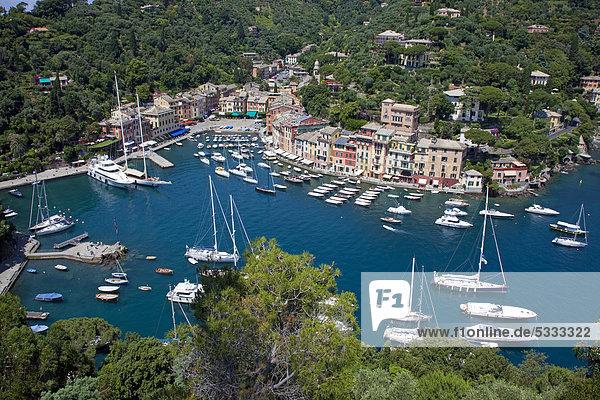 Luxusyachten im Hafen von Portofino  Ligurien  Levante  Italien  Europa