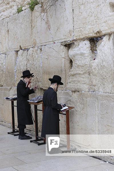 Betende orthodoxe Juden an der Klagemauer  Jerusalem  Israel  Naher Osten  Vorderasien