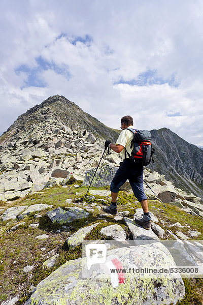Mountaineer climbing Gaisjochspitze mountain  Gitschberg mountain  Gaisjochspitze mountain at the back  province of Bolzano-Bozen  Italy  Europe