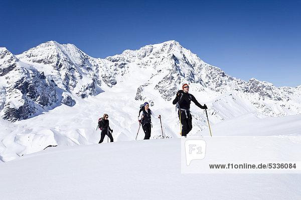 Skitourengeher beim Aufstieg zur hinteren Schöntaufspitze  Sulden im Winter  hinten der Ortler und der Zebru  Südtirol  Italien  Europa