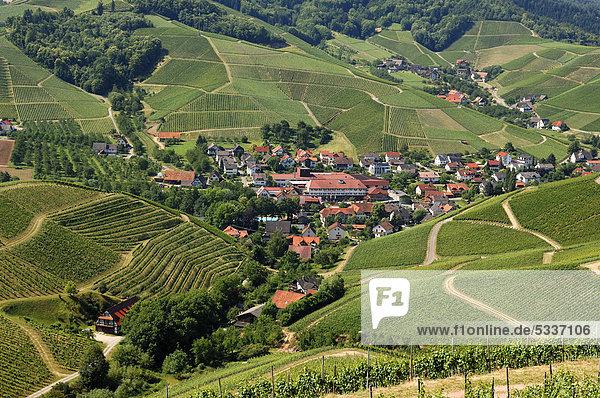 Blick von der Burg Staufenberg auf Durbach und Weinberge  Baden-Württemberg  Deutschland  Europa