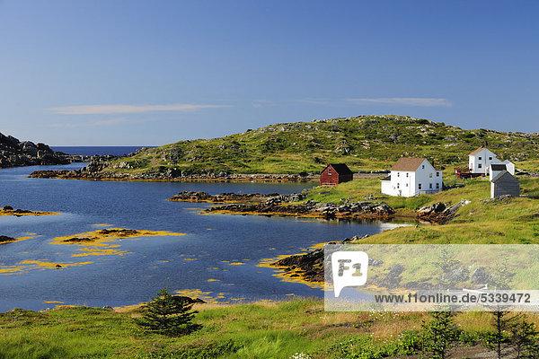 Fischerhäuser und Fjordlandschaft  bei Twillingate  Newfoundland  Neufundland  Kanada
