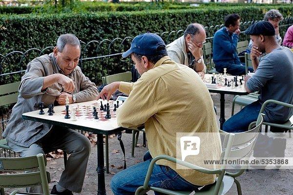 Außenaufnahme  Städtisches Motiv  Städtische Motive  Straßenszene  Straßenszene  Paris  Hauptstadt  Frankreich  Mann  Schach  Herbst  Jardin du Luxembourg  spielen