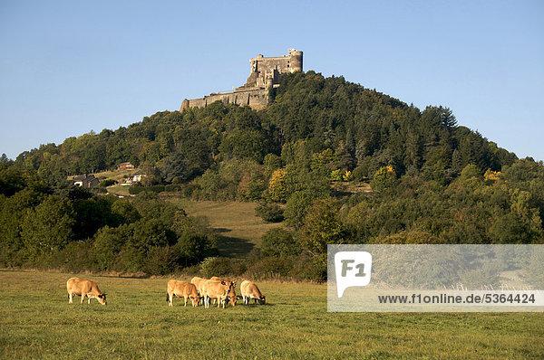 Castle of Murol  Auvergne  Puy-de-Dome  France  Europe