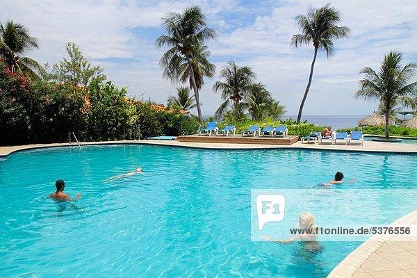 Palme  Niederländische Antillen  Frau  Mann  Hotel  Liege  Liegen  Liegestuhl  Urlaub  gastfreundlich  schwimmen  Karibisches Meer  niederländisch  Gast