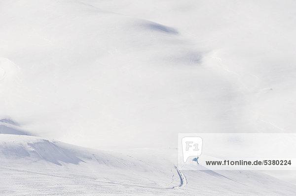 Austria  Zurs  Lech  Young man doing alpine skiing on Arlberg mountain