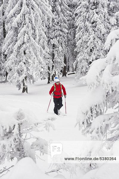 Junger Mann beim Telemark-Skifahren im Bergwald Herzogstand