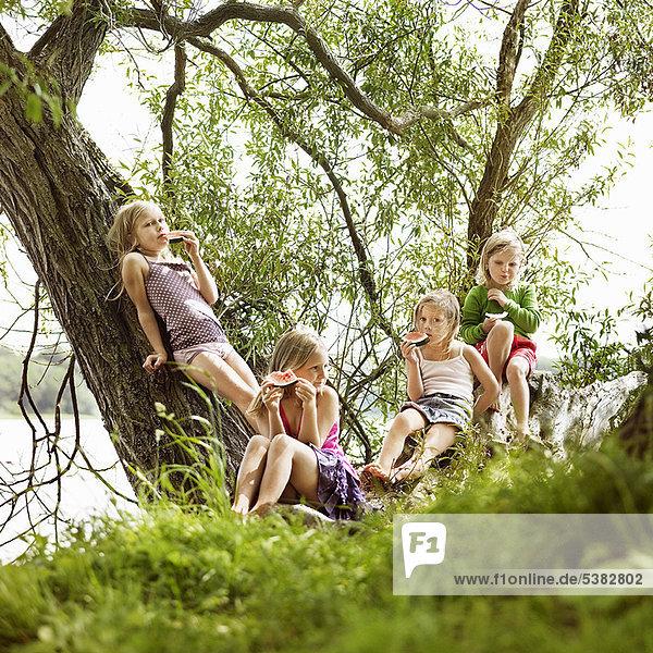 Mädchen essen Wassermelone im Baum am See