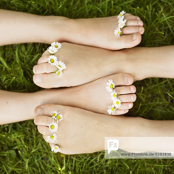 Nahaufnahme von Gänseblümchen auf Kinderzehen