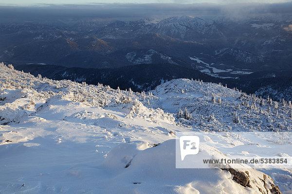 Benediktenwand im Winter  Benediktbeuern  Bayern  Deutschland  Europa