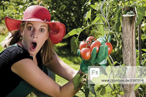 Erstaunte Gärtnerin bei der Tomatenernte