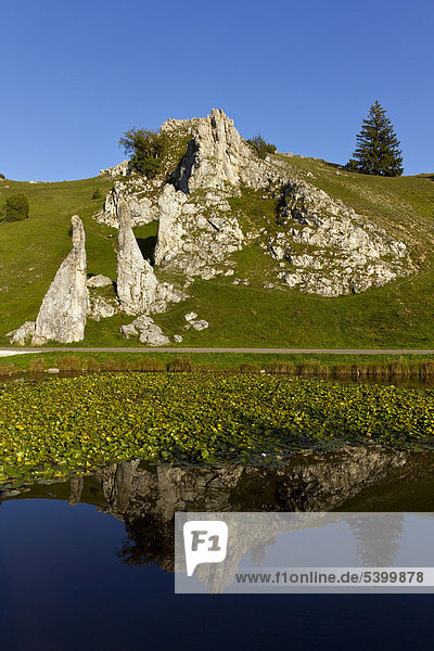 Eselsburger Valley near Herbrechtingen  Swabian Alb  Baden-Wuerttemberg  southern Germany  Germany  Europe