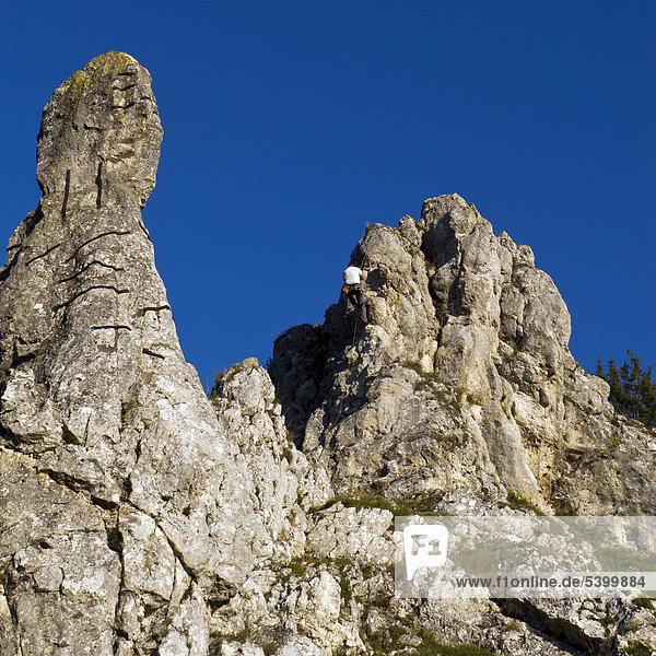 Rock climbing in Eselsburger Valley near Herbrechtingen  Swabian Alb  Baden-Wuerttemberg  southern Germany  Germany  Europe