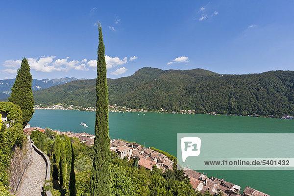 Blick über Morcote auf den Luganer See  Zypresse (Cupressus)  Luganersee  Lago di Lugano  Tessin  Schweiz  Europa
