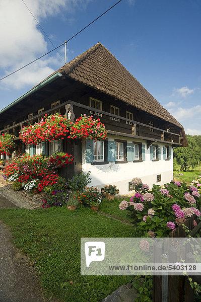 Altes Bauernhaus im Glottertal  Schwarzwald  Baden-Württemberg  Deutschland  Europa