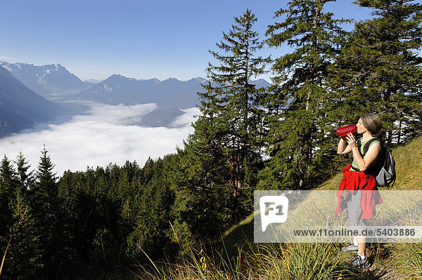 Mountaineer on Osterfeuerkopf mountain  Osterfeuerspitze near Eschenlohe  Loisachtal valley  Pfaffenwinkel  Upper Bavaria  Bavaria  Germany  Europe