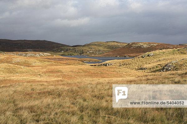 Europa  Großbritannien  Schottland  UK  Herbst  Natur  Landschaft  sumpfigen Landschaft  Loch  See  Meer  Gras  leichte Stimmung  Hebriden