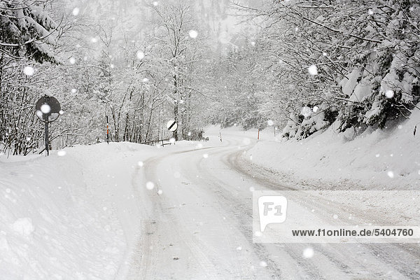 Snow-covered road  snowfall between Eisenerz and Hieflau  Upper Styria  Styria  Austria  Europe