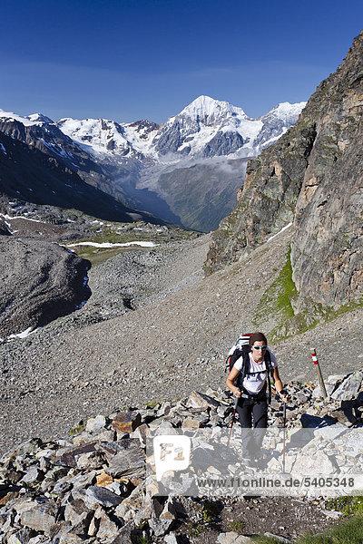 Wanderer beim Aufstieg zur Tschenglser Hochwand oberhalb der Düsseldorfhütte in Sulden  hinten die Königsspitze und der Zebru  Suldental  Südtirol  Italien  Europa