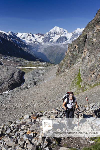 Hiker climbing Mt Croda di Cengles  above the Rifugio Serristori in Solda  Sulden  Mt Gran Zebru and Mt Monte Zebru in the back  Val di Solda  South Tyrol  Italy  Europe