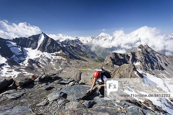 Kletterer beim Aufstieg über den Klettersteig zur Tschenglser Hochwand oberhalb der Düsseldorfhütte in Sulden  hinten die Vertainspitze und die Königsspitze  Suldental  Südtirol  Italien  Europa