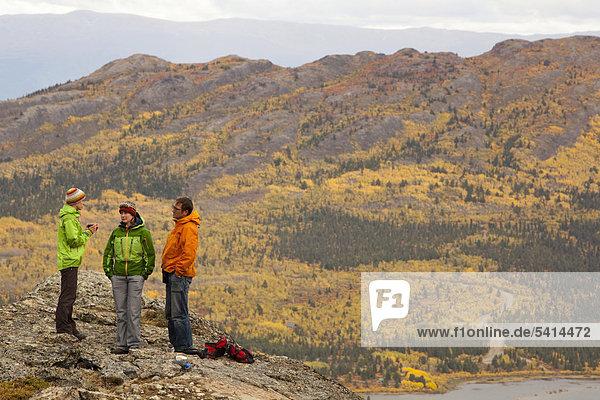 Eine Gruppe Wanderer  subalpine Tundra  Spätsommer  Blätter in Herbstfarben  Herbst  in der Nähe des Sees Fish Lake  Yukon Territory  Kanada