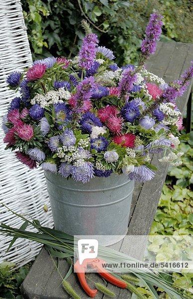 Bunten Blumenstrauß mit Aster