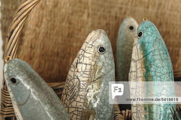 Dekorative Fische