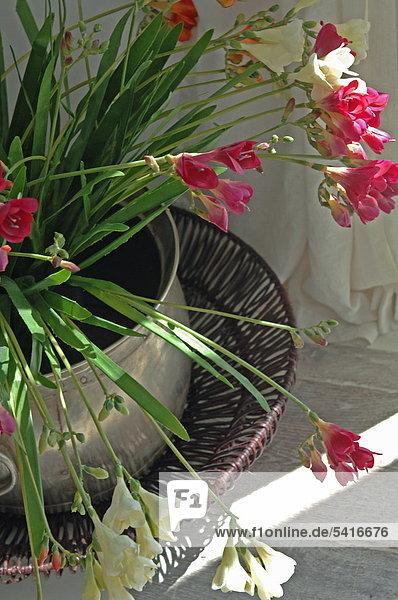 Jardaniere mit Blumen