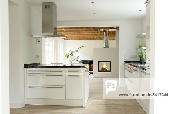 Kamin,Küche,modern 32372,offen,Organisation,Wohnkamin,Wohnkamine ...