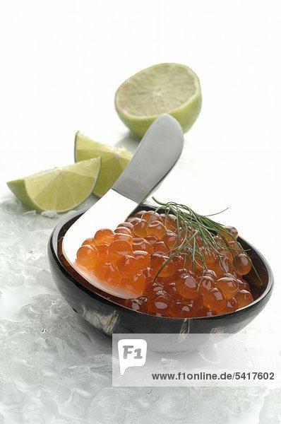 Kaviar Lachs in Schüssel