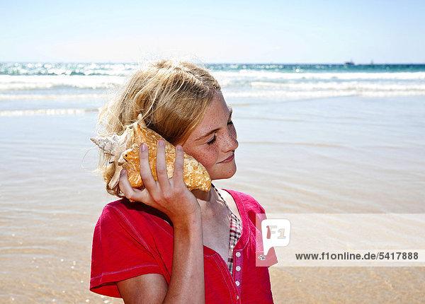 Muschel Jugendlicher Mädchen
