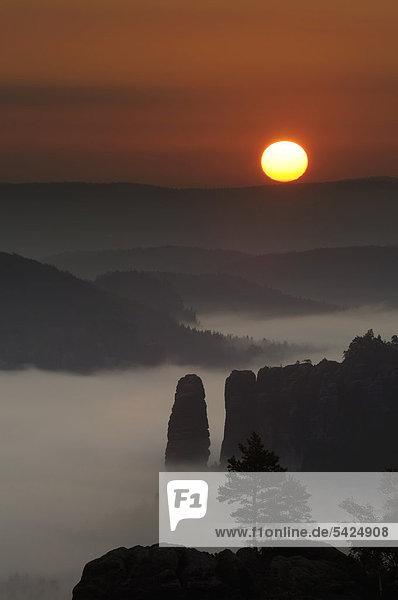 Nebel im Elbsandsteingebirge  Sonnenaufgang über dem Bloßstock  Sachsen  Deutschland  Europa