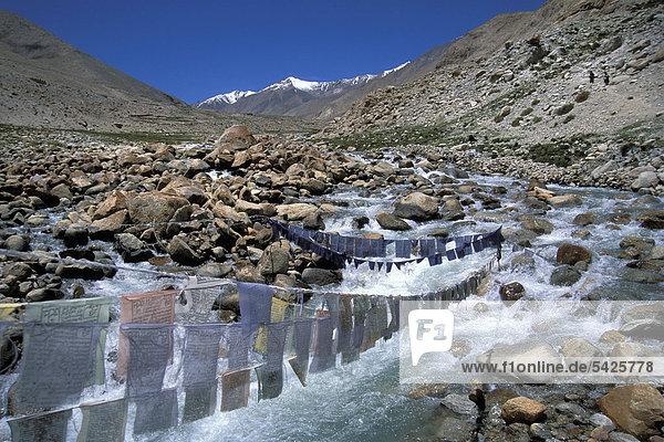 Prayer flags near Honupatta  Zanskar  Ladakh  Indian Himalayas  Jammu and Kashmir  northern India  India  Asia