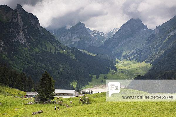 Europa See Ansicht Zimmer Schweiz