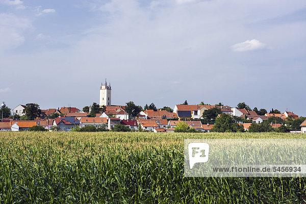 Podivin  Bezirk Breclav  Region Südmähren  Tschechische Republik  Europa